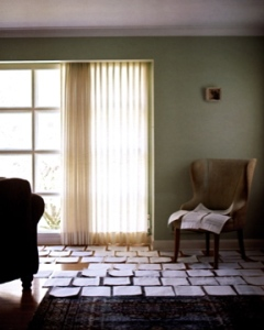 light shines in a large window to a living room where loose pages are evenly spread out on the floor drying